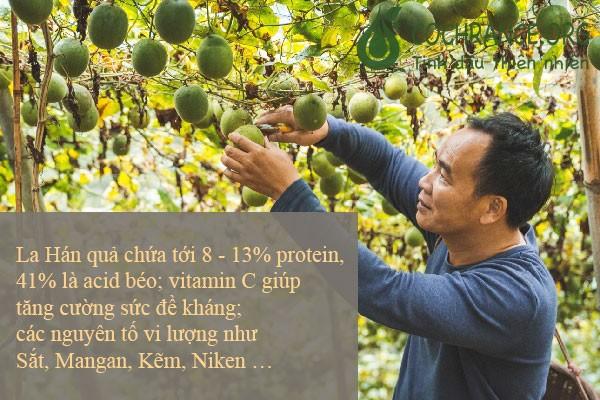 La Hán Quả đem lại những tác dụng tuyệt vời cho con người.