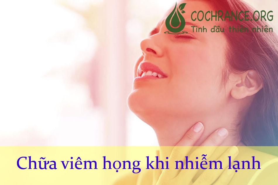 Hoa xuyến chi chữa viêm họng khi nhiễm lạnh